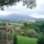 【淡水亲子餐厅】日光行馆景观餐厅台北后花园享受下午茶、排餐