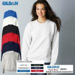 美国第一品牌GILDAN 亚规大学T-Shirt(1件)