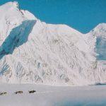 明信片跨国交换平台收到第七张来自美国阿拉斯加州的明信片