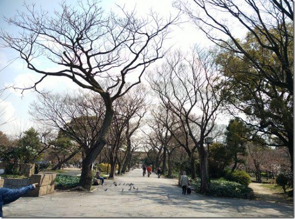 2016日本九州京阪小人同行大阪自由行之心斋桥篇