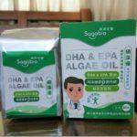 【硕英生医】硕藻优—藻油DHA&EPA,全素食者补充Omega-3的最佳选择!